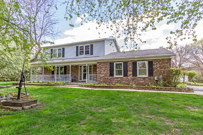 Gilberts Single Family Home New: 17n955 Mary Lane