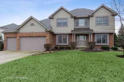 Plainfield Single Family Home New: 16807 Arbor Creek Drive