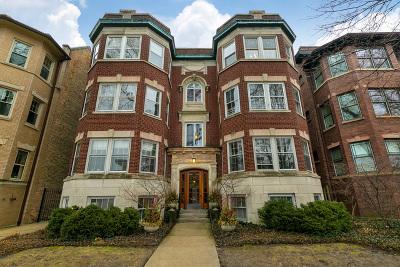 Evanston, Skokie Condo/Townhouse New: 917 Forest Avenue #3