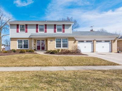 Elmhurst Single Family Home New: 767 South Linden Avenue