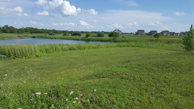 Plainfield Residential Lots & Land For Sale: 16615 South Rock Court