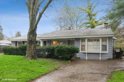 Schaumburg Single Family Home For Sale: 125 Warwick Court