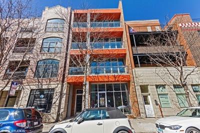 Chicago Condo/Townhouse New: 1722 West Belmont Avenue #3