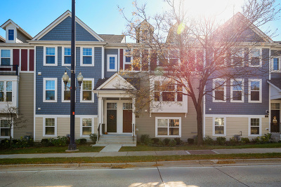 Schaumburg Condo/Townhouse New: 124 Waterbury Circle