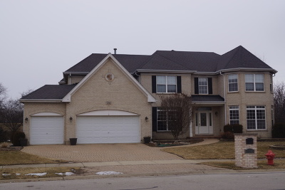 Bloomingdale Single Family Home For Sale: 318 Erie Circle