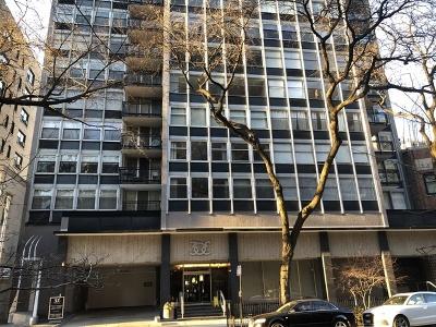 Condo/Townhouse New: 30 East Elm Street #19E
