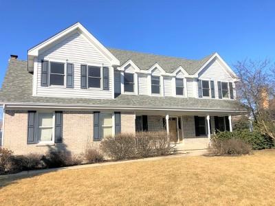 Wheaton Single Family Home New: 25w660 Prairie Rose Circle