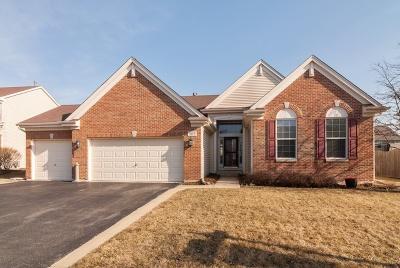 Oswego Single Family Home New: 509 Chestnut Drive