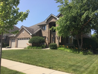 Orland Park Single Family Home New: 13716 Tallgrass Trail