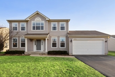 McHenry Single Family Home New: 6434 Cork Lane