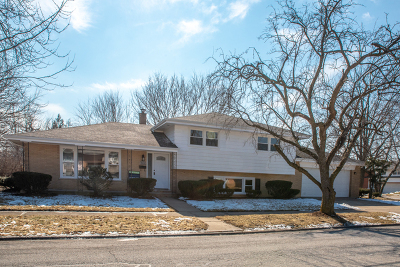 South Holland Single Family Home New: 743 East 167th Place