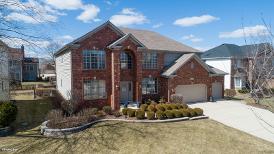 Naperville Single Family Home New: 3419 Redwing Drive