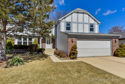 Wheaton Single Family Home New: 1401 Hyatt Drive