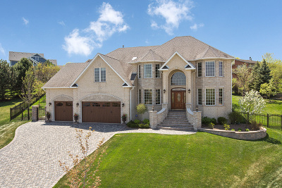 Lemont IL Single Family Home New: $799,900