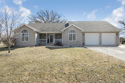 Braidwood Single Family Home For Sale: 34711 South Center Street