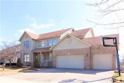 Carol Stream Single Family Home For Sale: 1123 Adler Lane