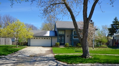 Homer Glen Single Family Home For Sale: 13940 West Timberlane Court