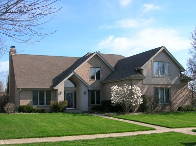 Mokena Single Family Home New: 10500 Williams Way