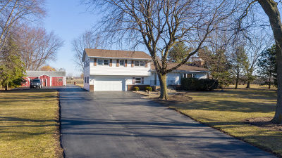 Plainfield Single Family Home For Sale: 25254 West Wolfs Road