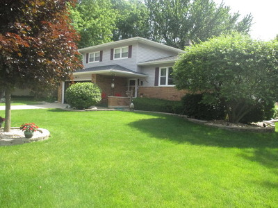 Elgin IL Single Family Home New: $281,900
