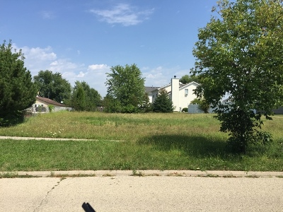 Plainfield Residential Lots & Land For Sale: 22604 Prairie Crossing