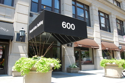Chicago Condo/Townhouse New: 600 South Dearborn Street #311