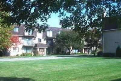 Naperville Rental New: 92 Olesen Drive #100