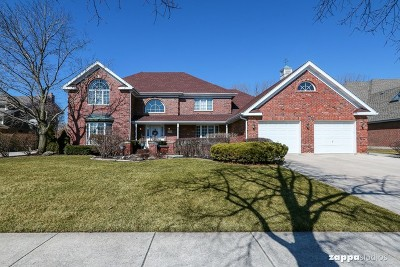 Homer Glen Single Family Home New: 13258 West Creekside Drive