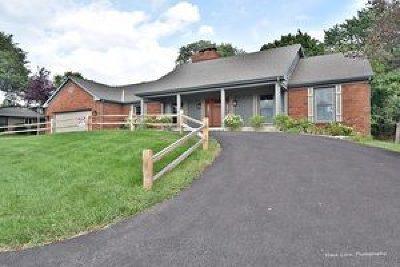 Geneva Single Family Home For Sale: 315 West Lane