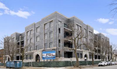 Chicago Condo/Townhouse New: 5748 North Hermitage Avenue #206