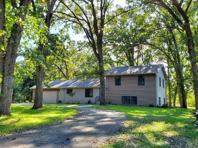 Ogle County Single Family Home For Sale: 5287 East Canfield Road