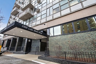 Cook County Condo/Townhouse New: 1000 North Lake Shore Drive #1605