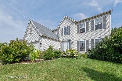 Round Lake Single Family Home For Sale: 334 West Prairie Walk Lane