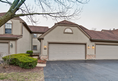 Schaumburg Condo/Townhouse For Sale: 157 Barton Circle