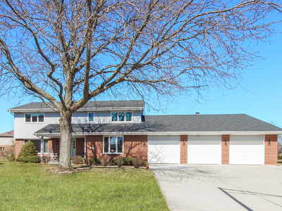 Palos Park IL Single Family Home New: $449,900