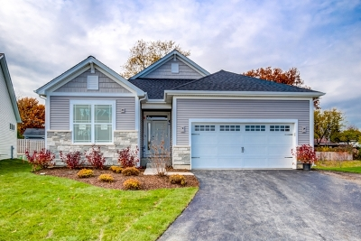 Du Page County Single Family Home New: Lot 20 Lot 20 Drive