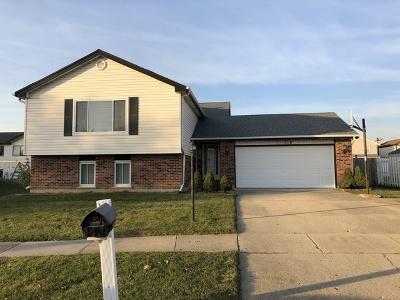 Streamwood Single Family Home New