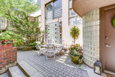 Cook County Condo/Townhouse New: 152 West Burton Place #CH