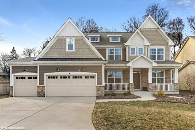 Downers Grove Single Family Home For Sale: 411 Atwood Court