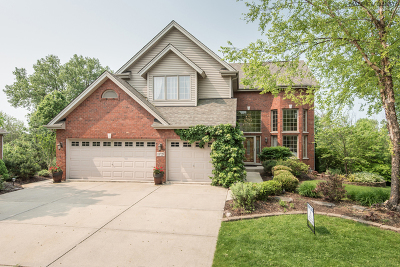 Orland Park Single Family Home For Sale: 11725 Cooper Way