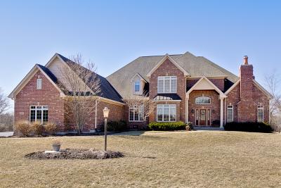 Crystal Lake Single Family Home For Sale: 3317 Deep Wood Drive