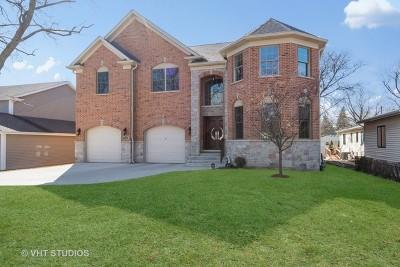 Palatine Single Family Home For Sale: 410 South Oak Street