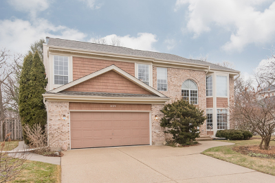 Algonquin Single Family Home For Sale: 625 Old Oak Circle