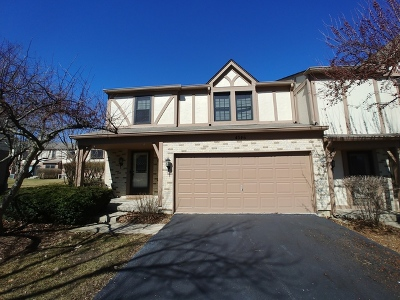 Hoffman Estates Condo/Townhouse For Sale: 4546 Opal Drive
