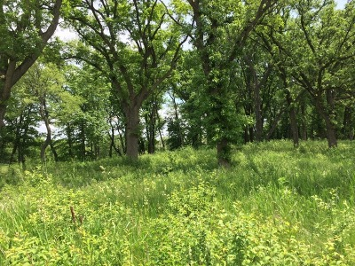 Woodstock Residential Lots & Land For Sale: 1201 Ridgemoor Trail