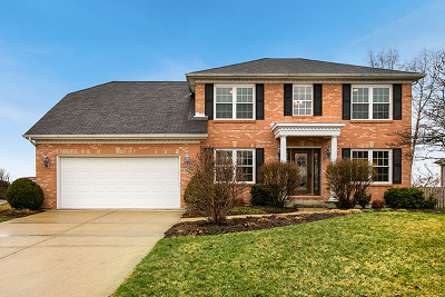 Plainfield Single Family Home For Sale: 15206 South Lincolnway Circle
