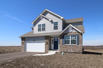 Montgomery Single Family Home For Sale: 998 Garnet Lane