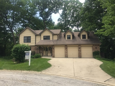 Bolingbrook Single Family Home For Sale: 855 Aberdeen Court