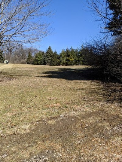 Elburn Residential Lots & Land For Sale: 56 Pine Row Court
