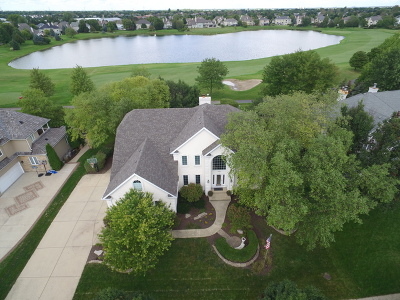 Naperville Single Family Home For Sale: 2460 Fawn Lake Circle